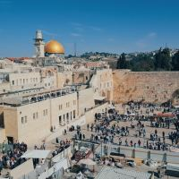 Reflections on Sacrifice: Tish B'Av and Eid al-Adha