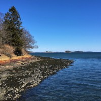 Isolation Adventures: Mackworth Island Fairies